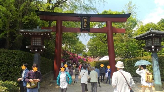 根津神社 ,日本人愛來!
