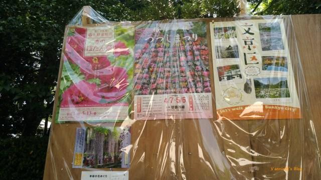Tokyo Yanesen Nezujinjia-20180419-Poster