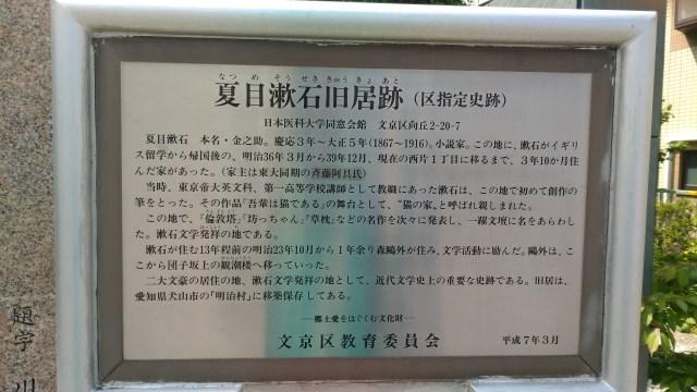 Tokyo Yanesen Natsumesoseki-20180419
