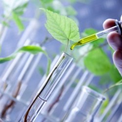 Growing Preference of Ecofriendly Products Driving Global Biopolymers Market