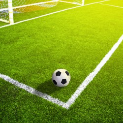Global Sports Turf Market to Expand with Growing Popularity of Indoor Sports