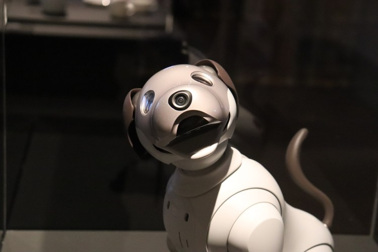 Sony's AI-Puppy Gets Banned in Illinois