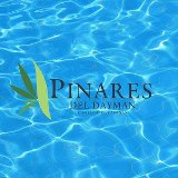 logo_pinares_dayman
