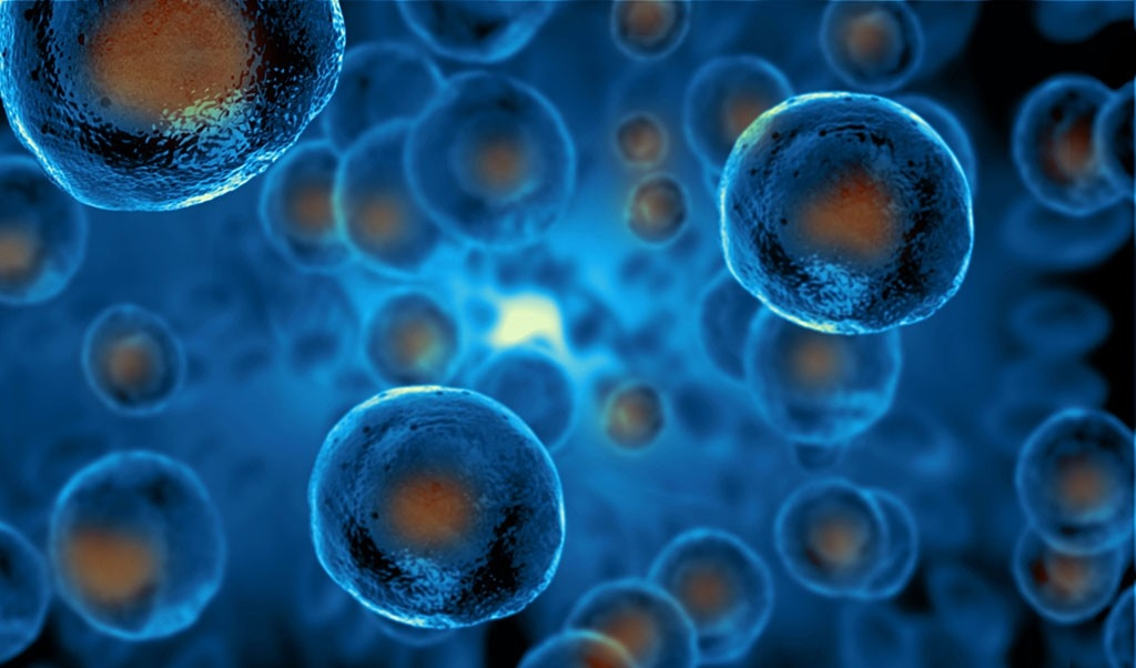 Using Artificial Muscles Sheets to Transform Stem Cells into Bone Cells