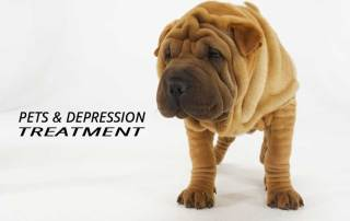 Do pets help for Depression Treatment