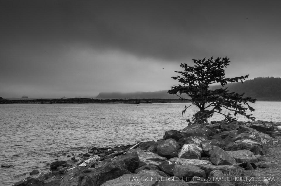 Second Beach, La Push, Black and White, by T.M. Schultze