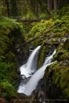 Sol Duc Falls by T.M. Schultze
