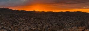 Christmas Eve From Joshua Tree - Panorama