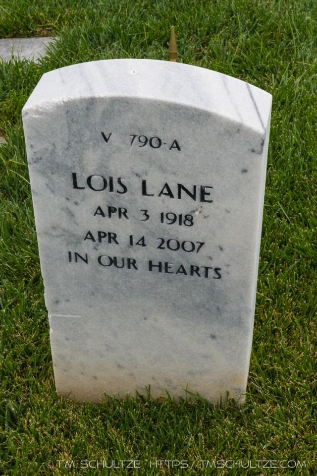 Lois Lane Found by T.M. Schultze