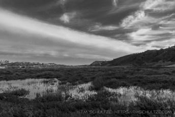 Penasquitos Creek Marsh