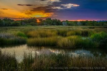 East Wetlands Sunrise
