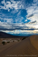Late Afternoon Sand Dunes