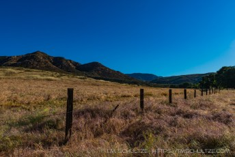Old Ranch Fence, Hollenbeck Canyon