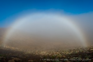 Fog Bow by T.M. Schultze, Favorite Photographs of 2017