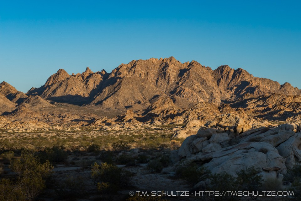 Aqua Peak and the Coxcombs by T.M. Schultze