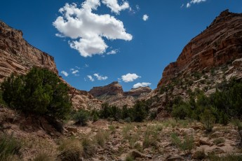 Side Canyon 4