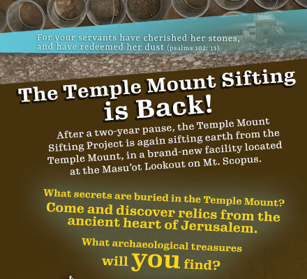 flier for renewed sifting activity