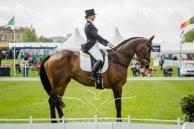 Chatsworth Horse Trials 2015-177