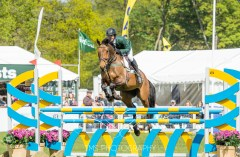 Chatsworth Horse Trials 2015-185