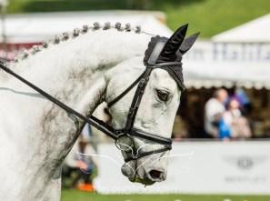 Chatsworth Horse Trials 2015-48