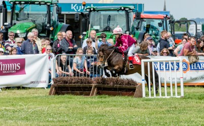 AshbyShow2015_Photography (10 of 67)