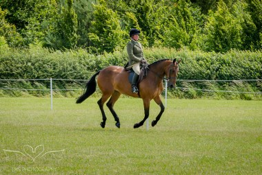 AshbyShow2015_Photography (38 of 67)