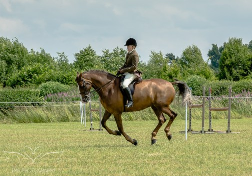 AshbyShow2015_Photography (39 of 67)