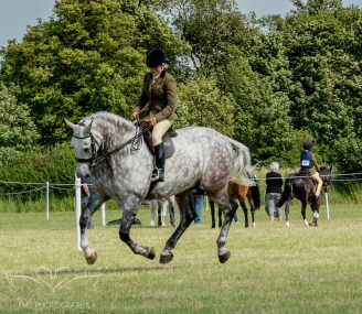 AshbyShow2015_Photography (60 of 67)