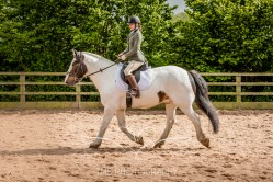 Equine_Photography_DerbyshireTMSPhotography-30