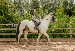 Equine_Photography_DerbyshireTMSPhotography-5