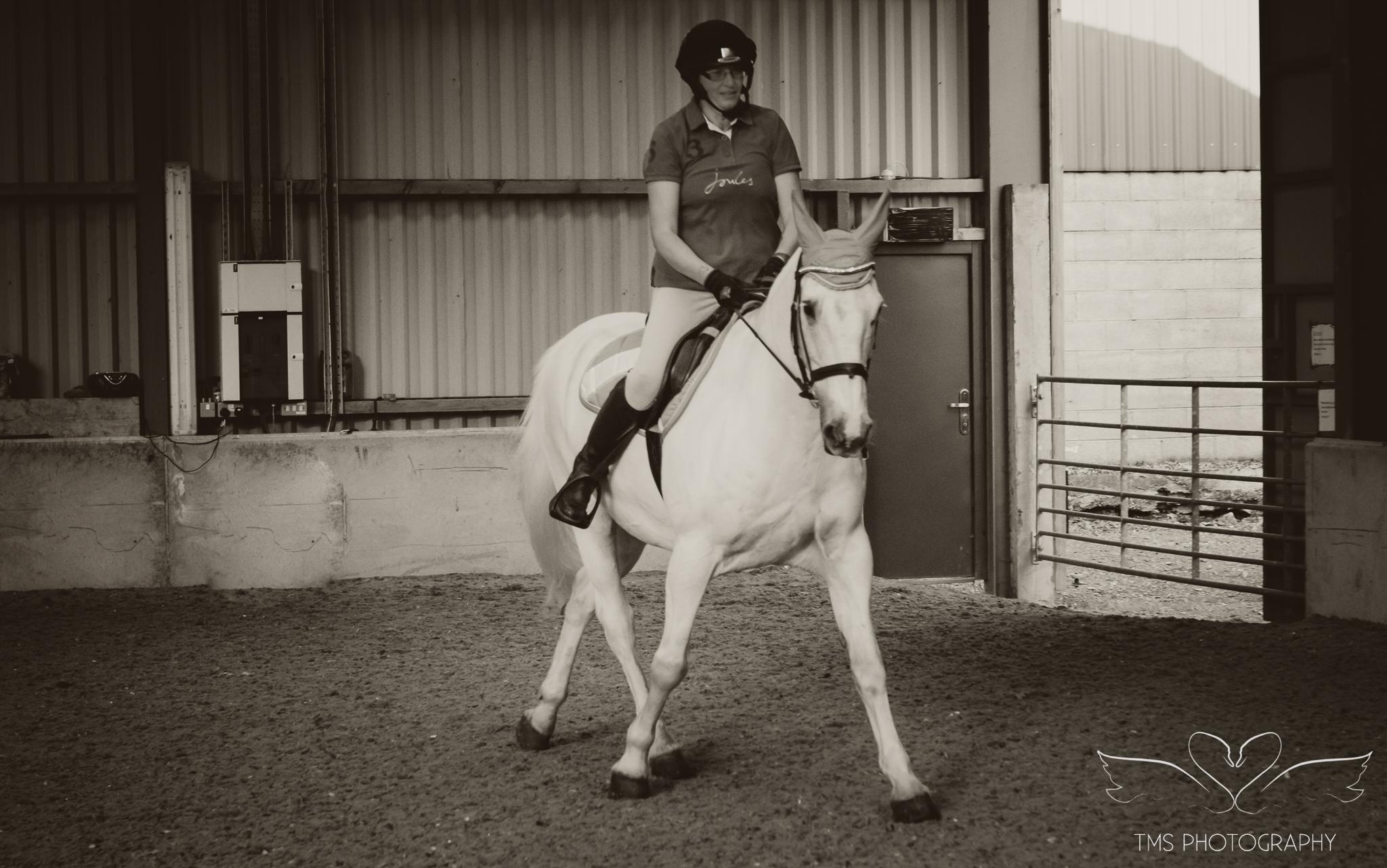 equine_photographer_Derbyshire-57