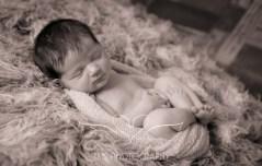 newborn_babyphotographer_derbyshire-29