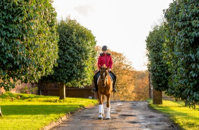 equine_photographyer_derbyshire_-42