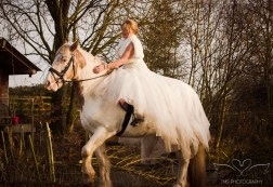 equine_Photographer_Leicestershire-17