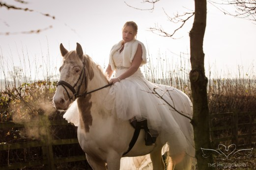 equine_Photographer_Leicestershire-3