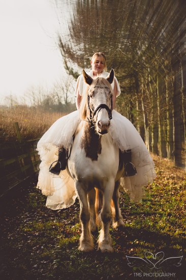 equine_Photographer_Leicestershire-5