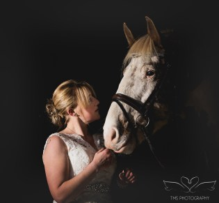 equine_Photographer_Leicestershire-94