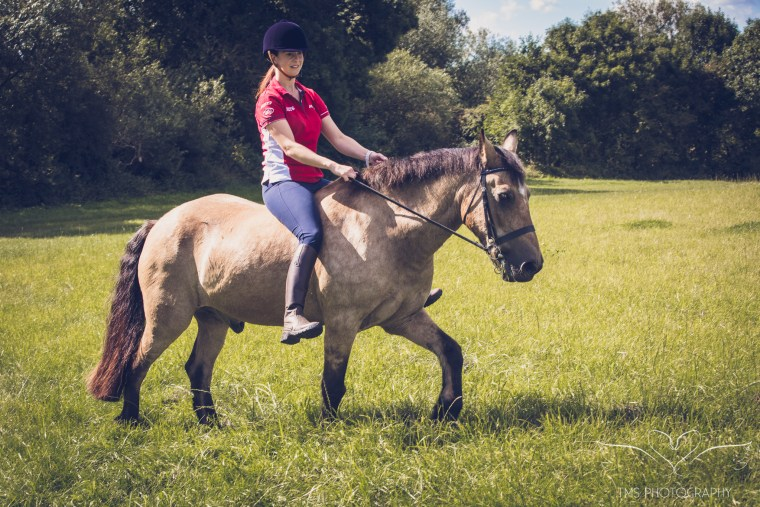 equine_photographer_Derbyshire-65
