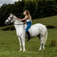 horse photographer derbyshire