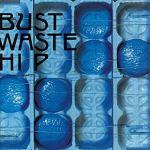 ブルーハーツのアルバムレビュー!④BUST WASTE HIP