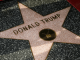 Pickax- Wielding Vandal Smashes President Trump's Hollywood Walk of Fame Star to Pieces
