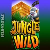 สล๊อต Jungle Wild
