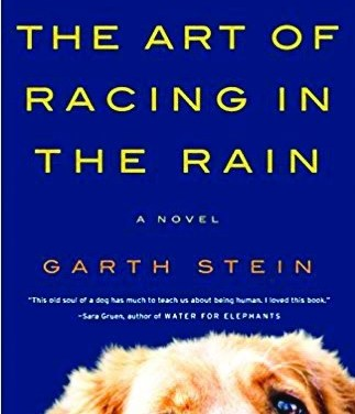 Book Review: 'The Art of Racing in the Rain'