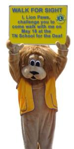 Lion Paws Challenge 2013