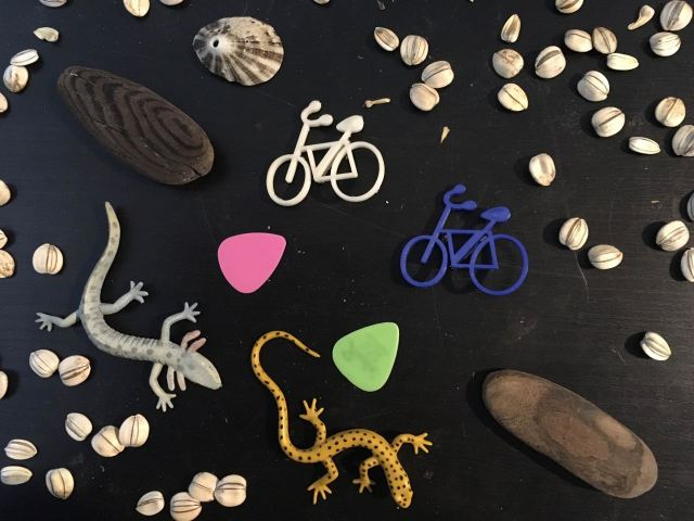 A collection of sunflower seeds, guitar picks, bicycle pins, sea shells and worn driftwood.
