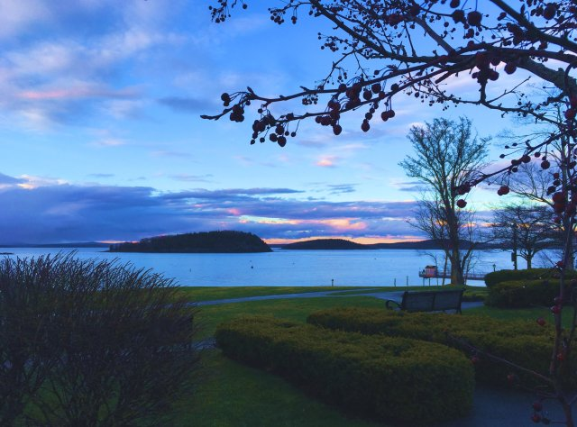 A view of Mt Desert Narrows from a downtown park in Bar Harbor. A couple of islands are visible in the middle distance.