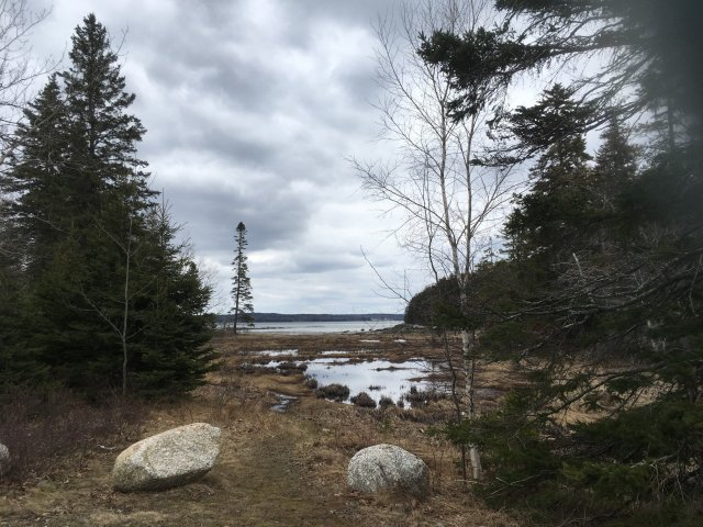 A view of the Mt Dessert Narrows from Acadian National Park