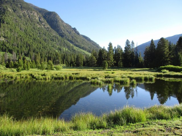 A beaver pond with a mountain, trees and sky reflecting on it.