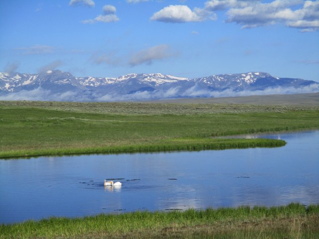 Mountains in the background, a small lake in the foreground in which there are two white pelicans.