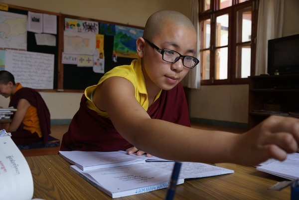 young Tibetan Buddhist nun at Shugsep Nunnery